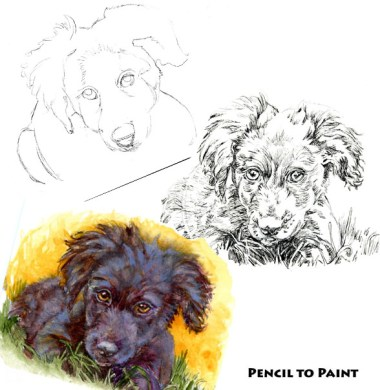 Puppy! #PencilToPaint I planned ahead, but had to change it up. Read all about it! #PostcardsForTheL