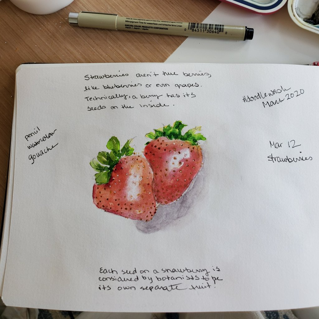 #Doodlewash #WorldwatercolorGroup #DoodlewashMarch2020 March 12: strawberries2020-03.12-strawberries