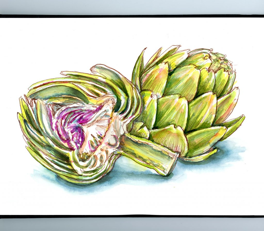 Artichoke Heart Watercolor Illustration_IG