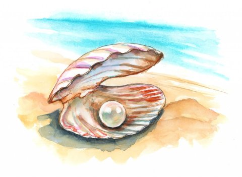 Pearl In Clam Shell Watercolor Painting