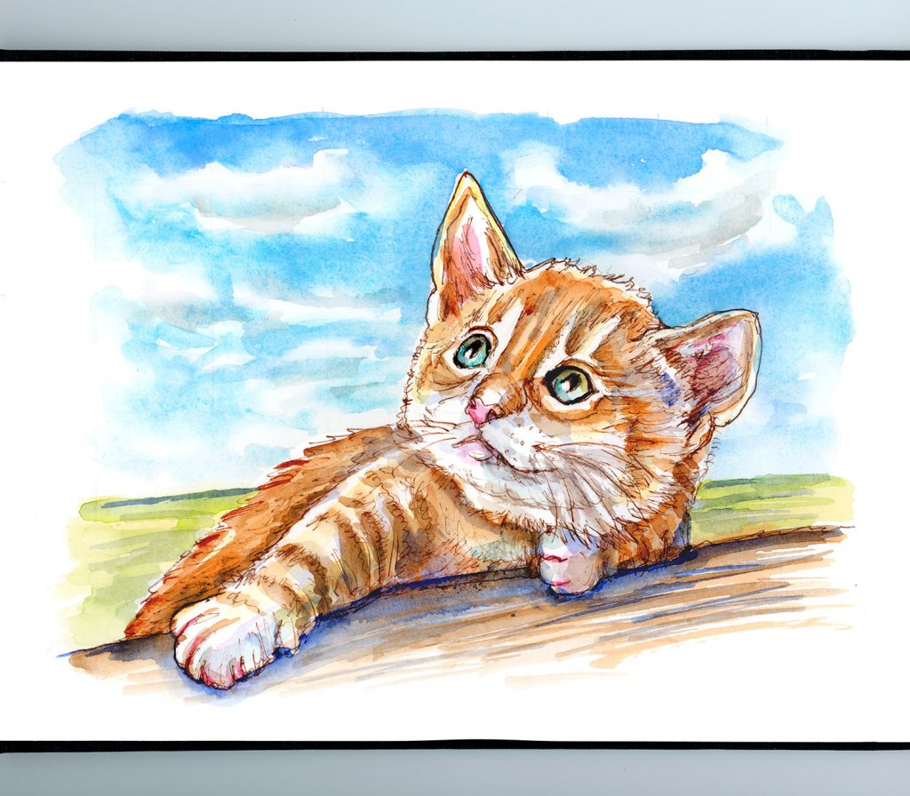 Tabby Cat Kitten Looking Up At Clouds Watercolor Painting Sketchbook Detail