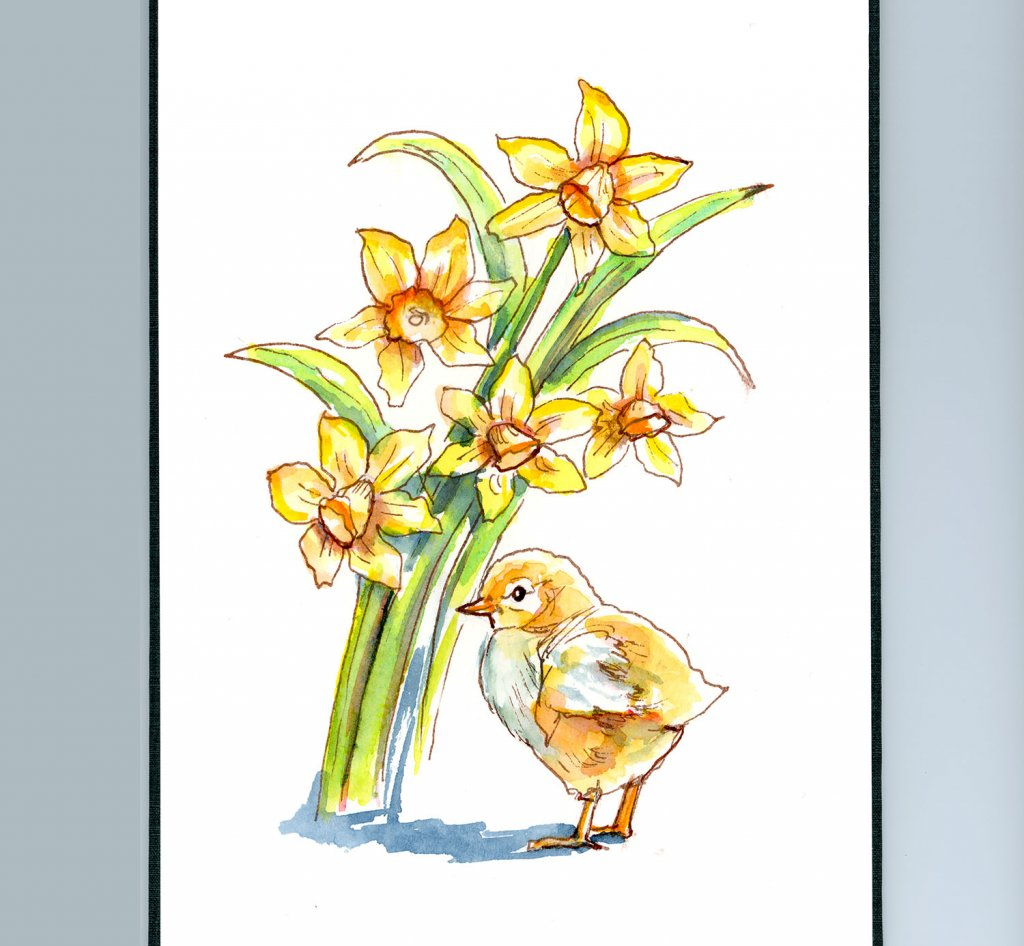 Baby Chick And Daffodils Watercolor Painting Sketchbook Detail