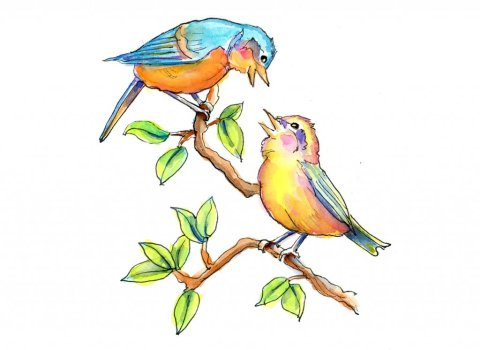 Two Songbirds Watercolor Illustration