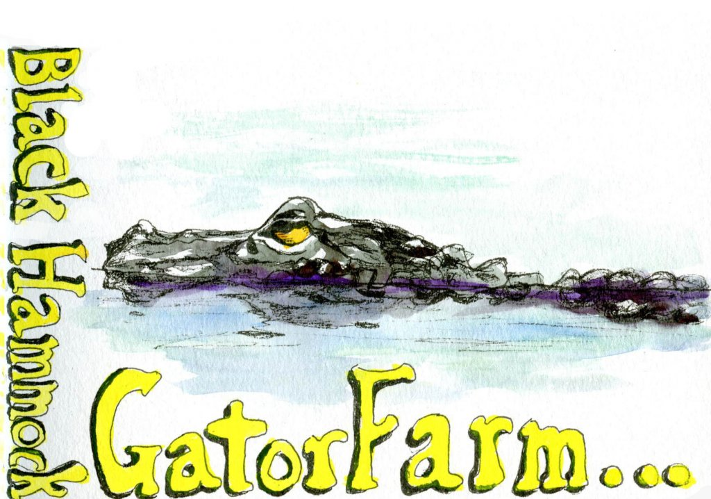 Watercolour lettering and illustration example alligator