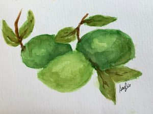 #doodlewashmarch2020 day 27 limes IMG_1711