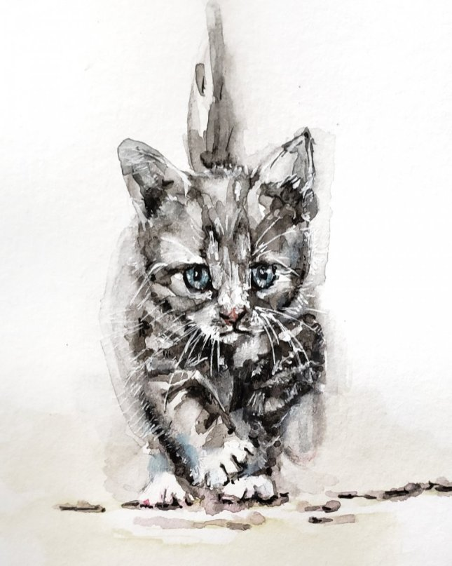 Kitten Watercolor Painting by Jenny Tran