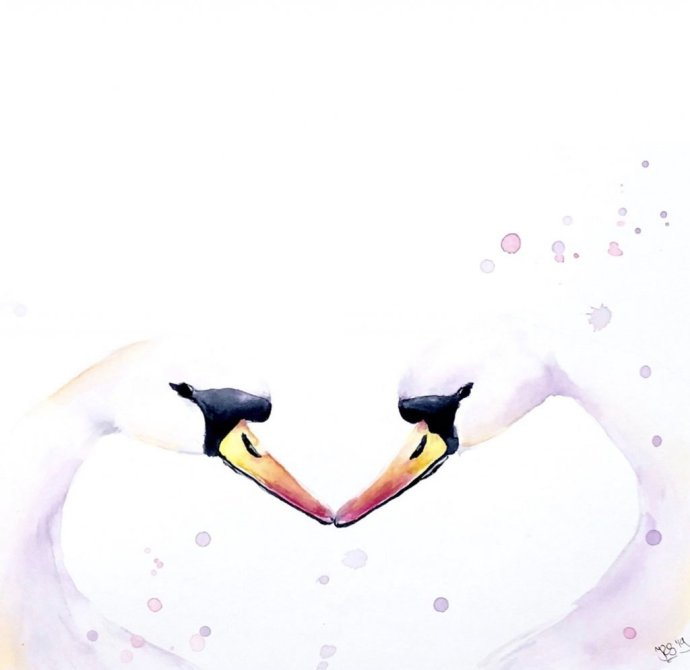 Two Swans Heart Watercolor Painting by Irma Rianne