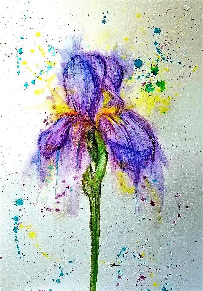 Iris iris my art