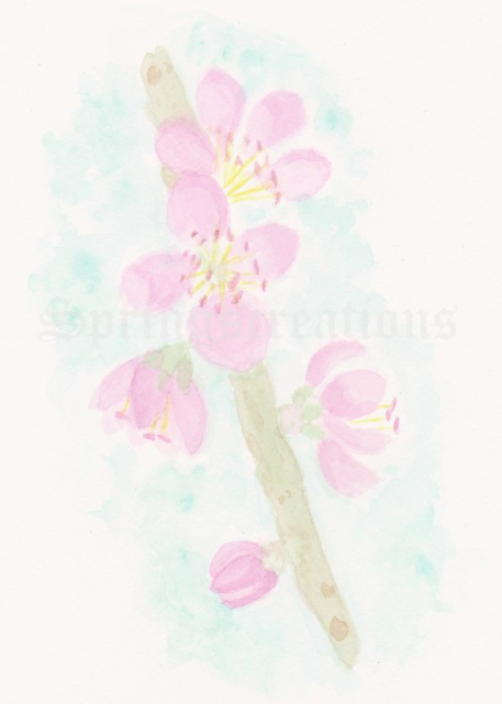 Day 57 of 100 days of hearts. Slant off doodle wash prompt: peach blossoms peachblossoms