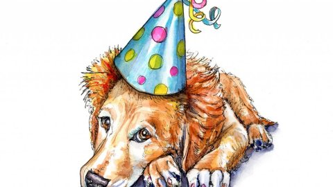 Dog Wearing Party Hat Watercolor Illustration