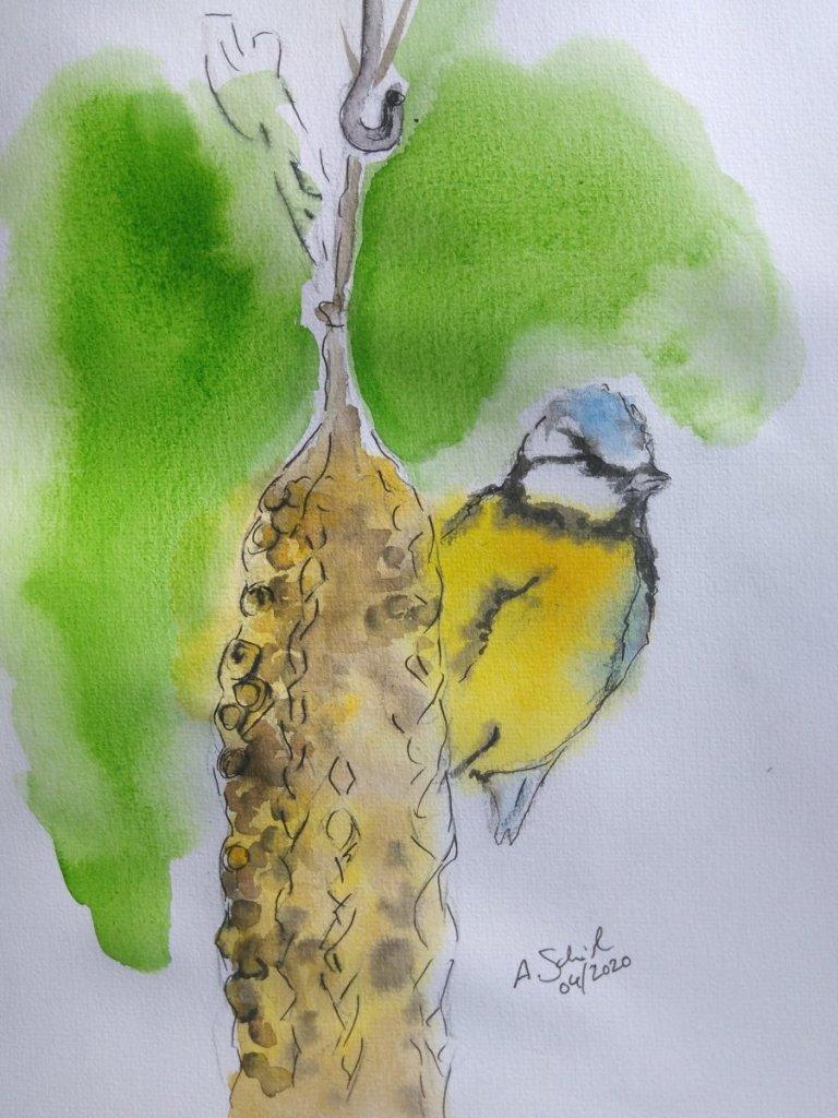 Bird feeder, inspired by a photo taken by my mom. #doodlewashApril2020_7birdfeeder