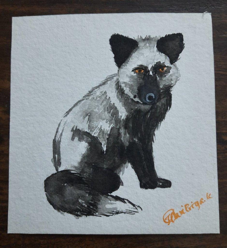 May 16th – silver fox 20200516_175508
