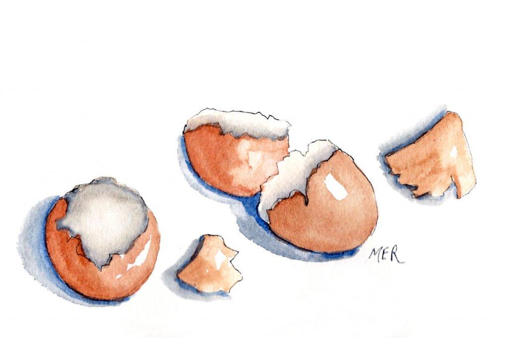 5/5/20 Eggshells 5.5.20 Eggshells img015