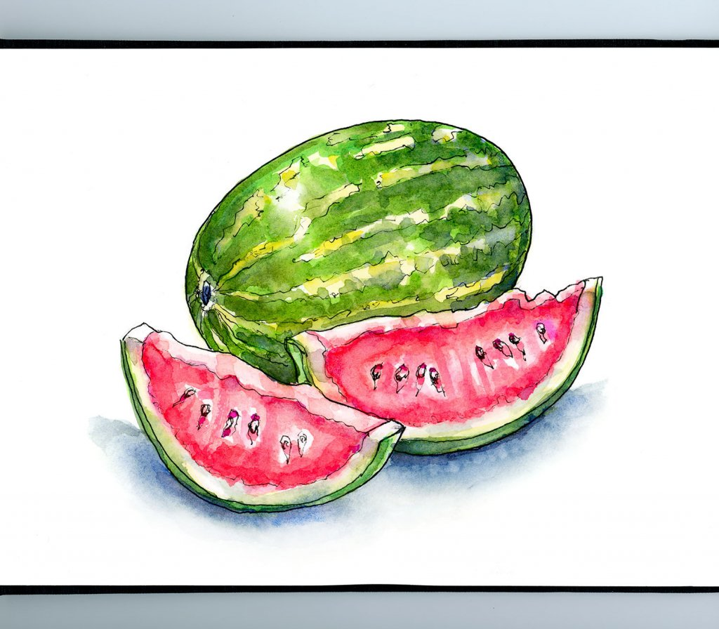 Watermelon And Slices Watercolor Illustration Sketchbook Detail