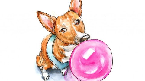 Dog Blowing Bubble Basenji Phineas Watercolor Illustration