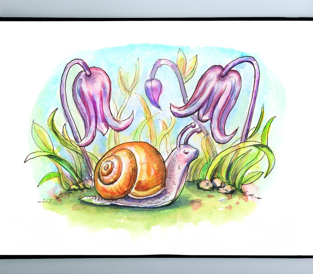 Snail And Flowers Bluebell Storybook Watercolor Illustration Sketchbook Detail