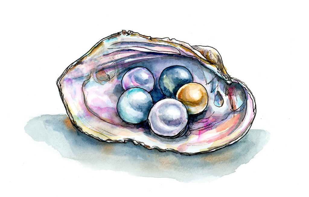 Colorful Pearls In Shell Watercolor Illustration