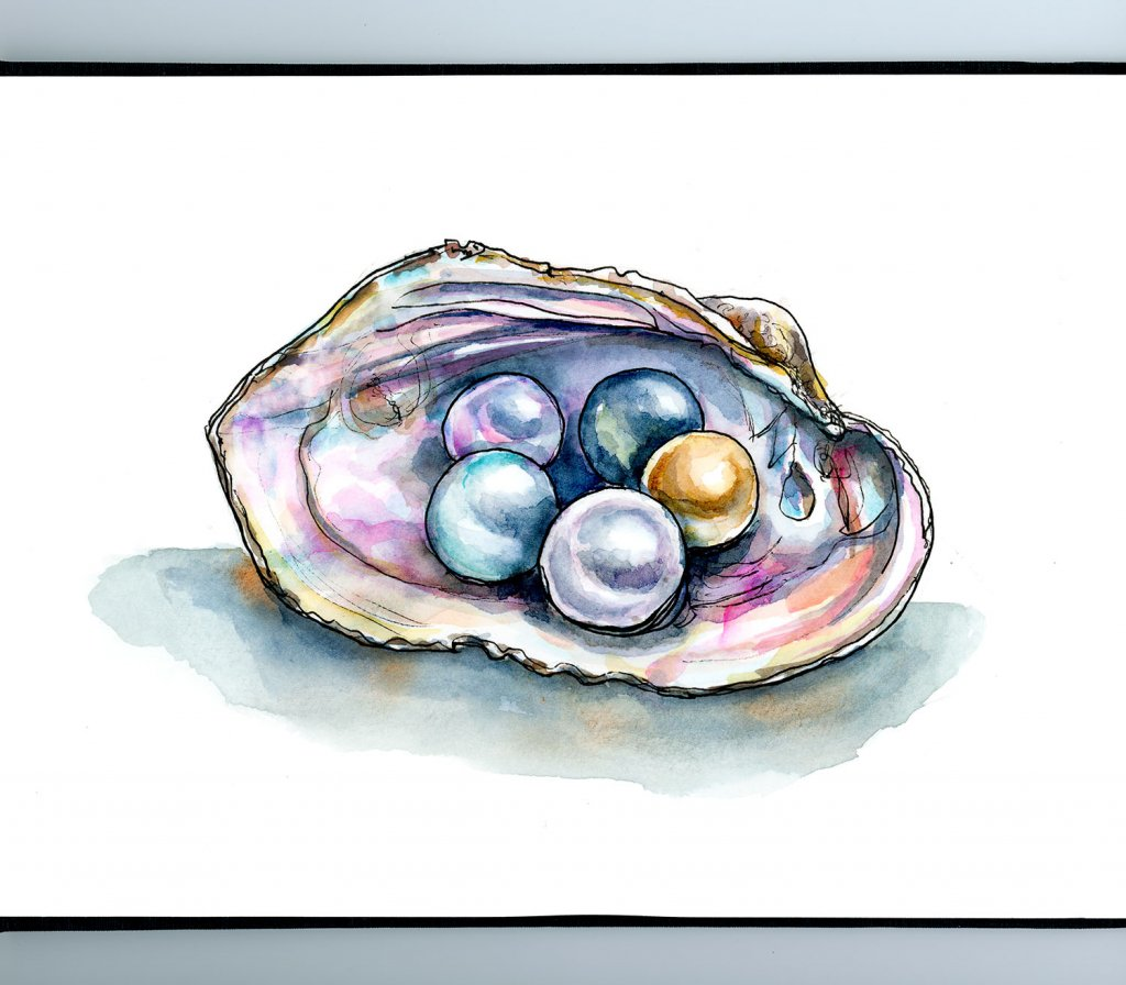 Colorful Pearls In Shell Watercolor Illustration Sketchbook Detail