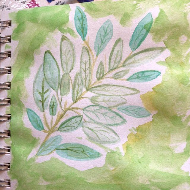 Sage leaves IMG_4948