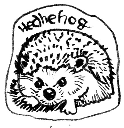 Did you know that hedgehogs have a strong resistance to snake venom? #PostcardsForTheLunchbag #doodl