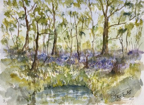 Bluebells in Kent Watercolour Painting by Brian Tucker