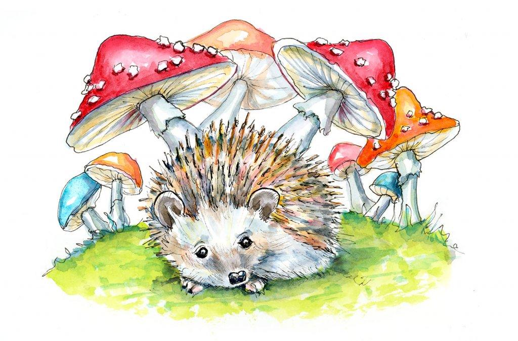 Hedgehog Cute Storybook Watercolor Painting Illustration