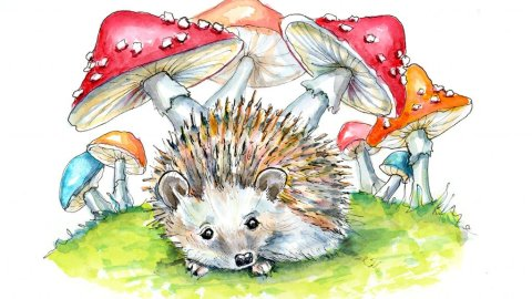 Hedgehog Cute Storybook Watercolor Painting Illustration
