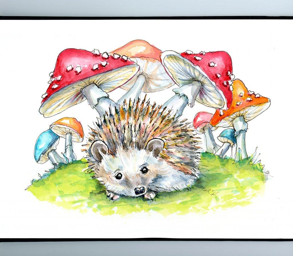 Hedgehog Cute Storybook Watercolor Painting Illustration Sketchbook Detail