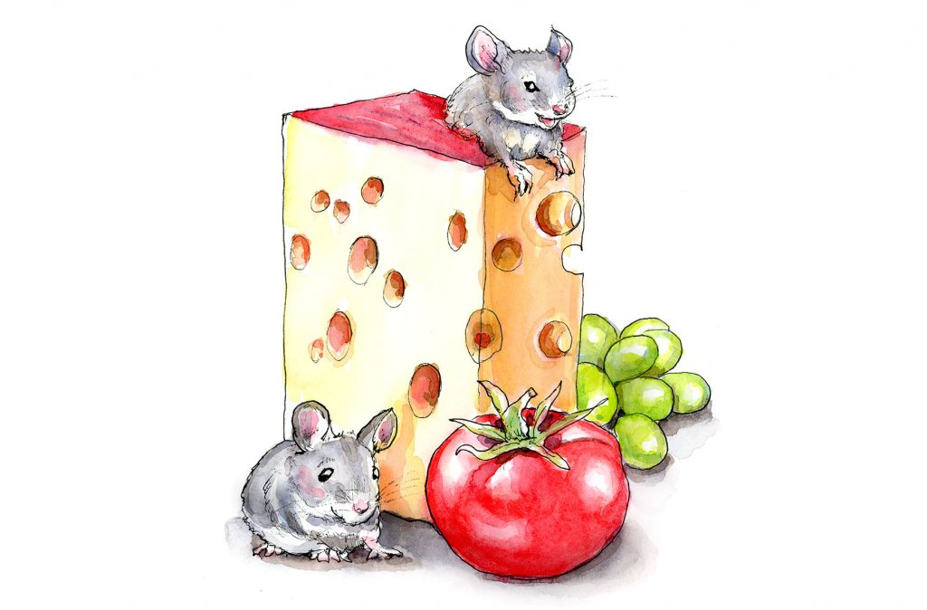 Mice Mouse Cheese Swiss Tomato Grapes Watercolor Painting Illustration