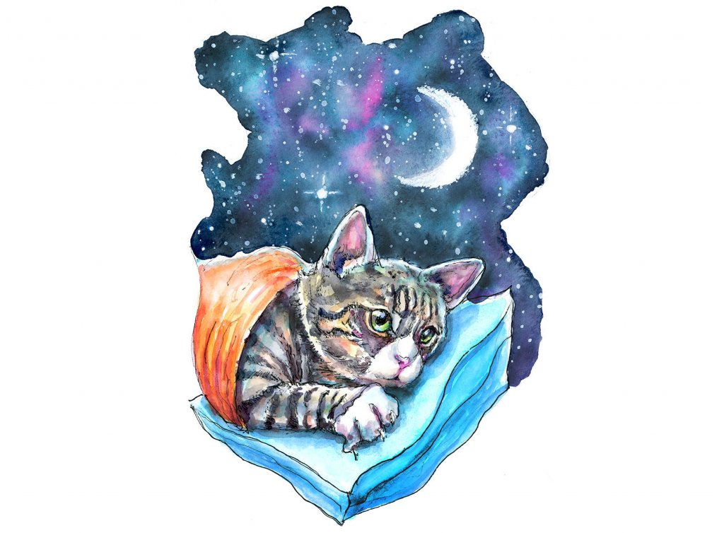 Cat Kitten Moon Galaxy Watercolor Painting Illustration