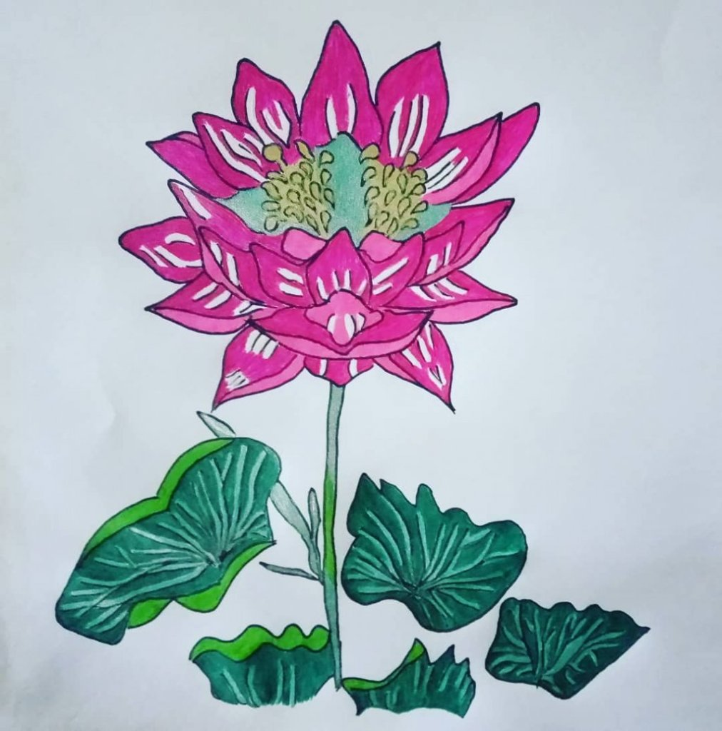 "for the second time I drew a ""lotus flower"" for #doodlewashJune2020 prompt no.2 I used gel pens:"