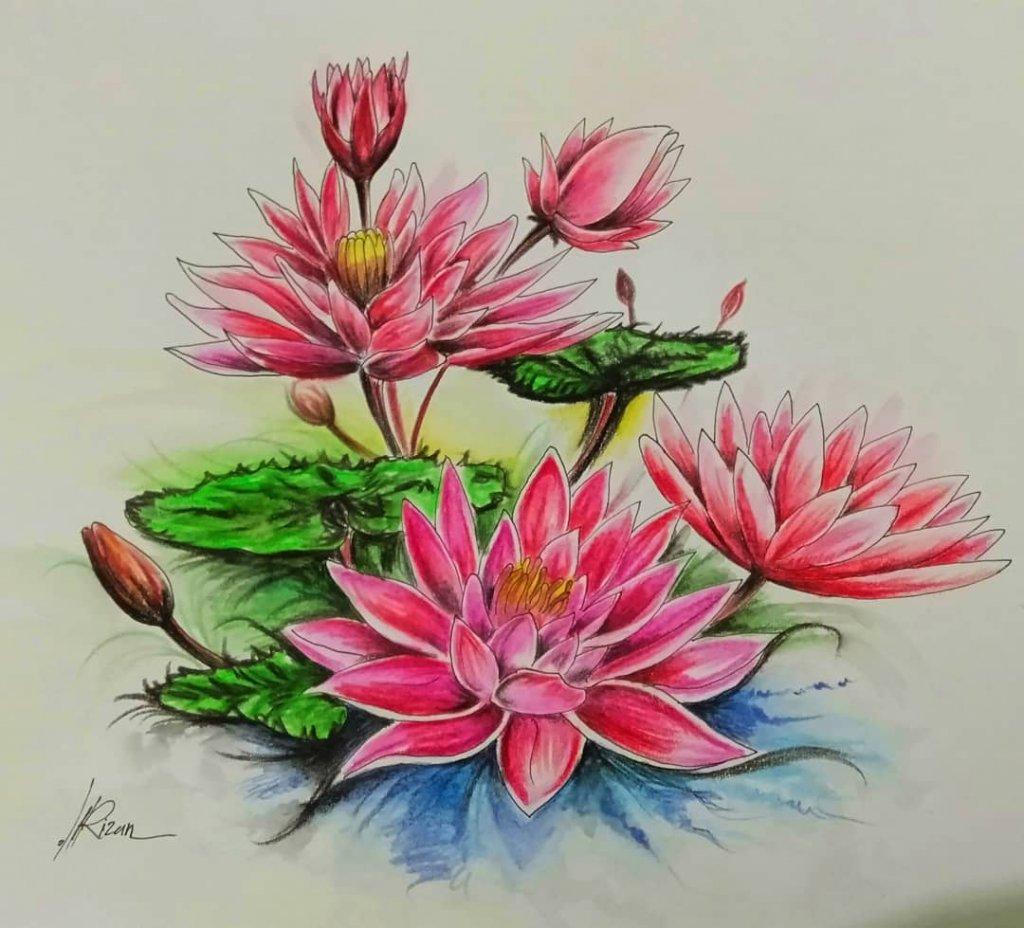 Lotus Flower #lotusflower #doodlewashjune2020 Art by @rizan_ahmad_subqi IMG_20200605_210433_405