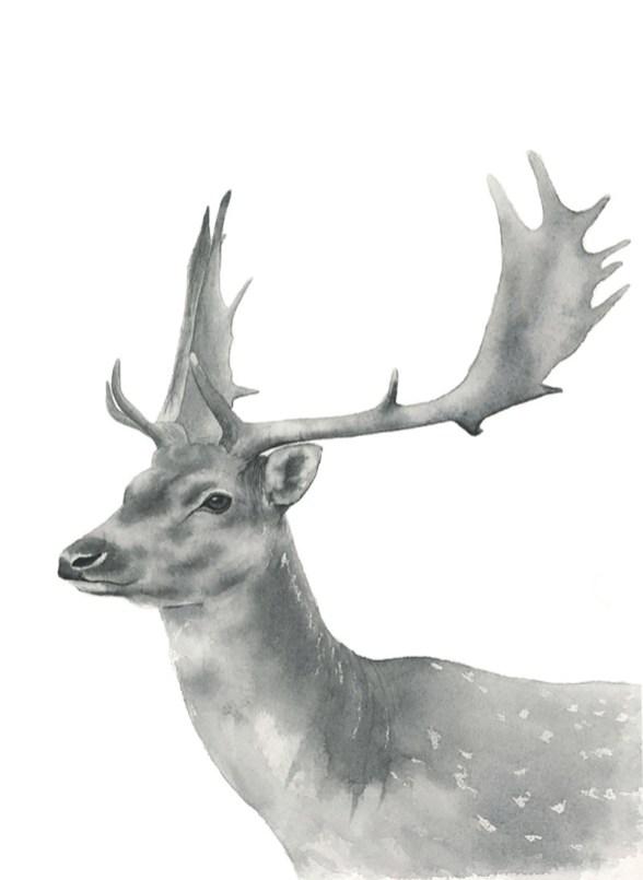 Nicoline Mann Art Buck 13x9.5