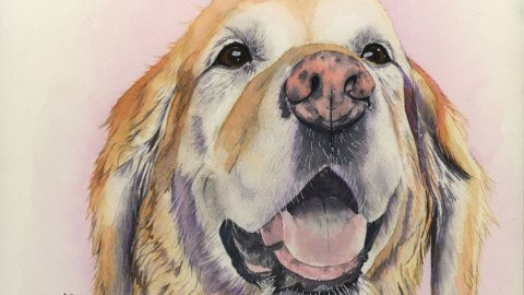 Nicoline Mann Art Therapy Personal Development Dog Watercolor Painting