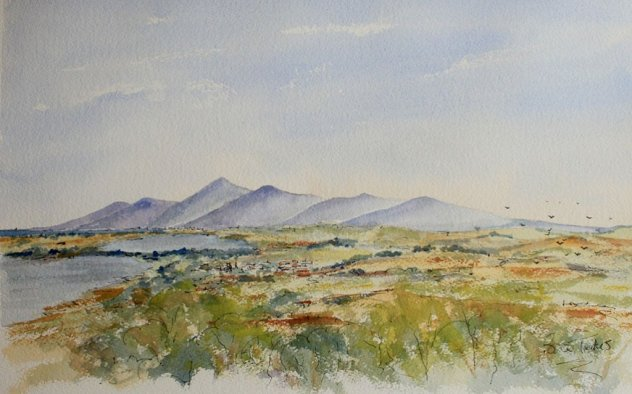 The Mountains of Mourne in Northern Ireland Watercolour Landscape Brian Tucker