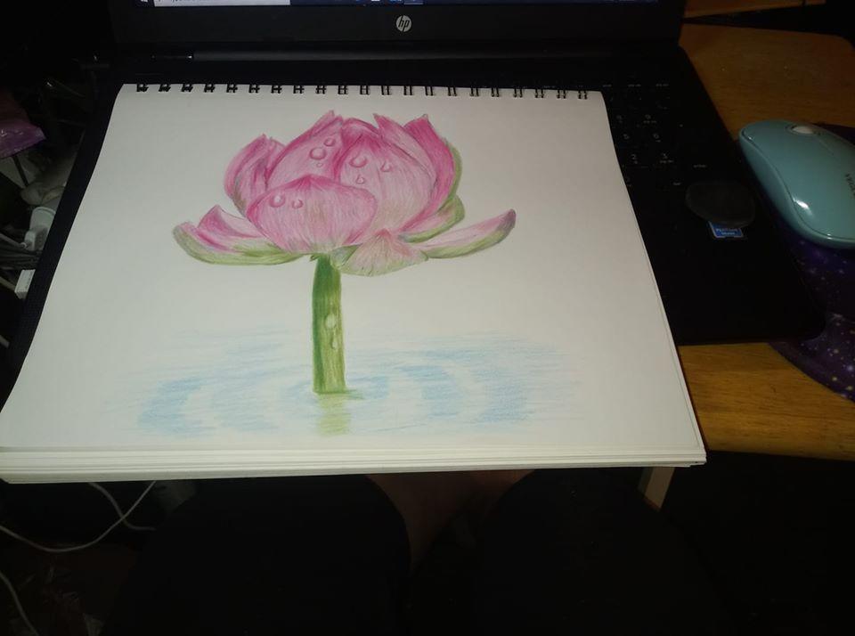 #doodlewashjune2020 lotus flower