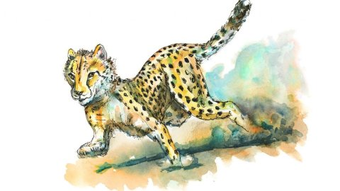 Cheetah Running Fastest Animal Watercolor Illustration Painting