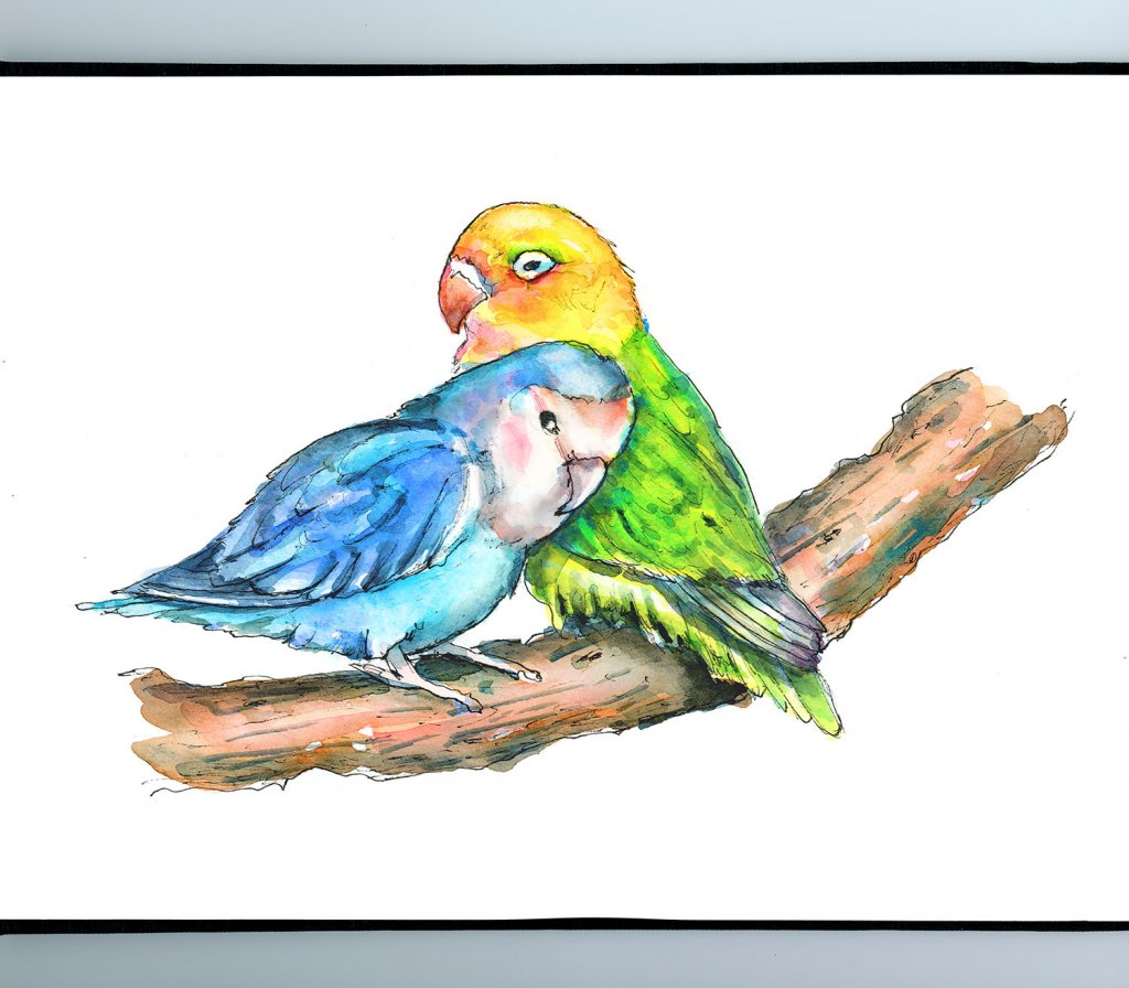 Two Love BIrds In Love Watercolor Illustration Painting Sketchbook Detail