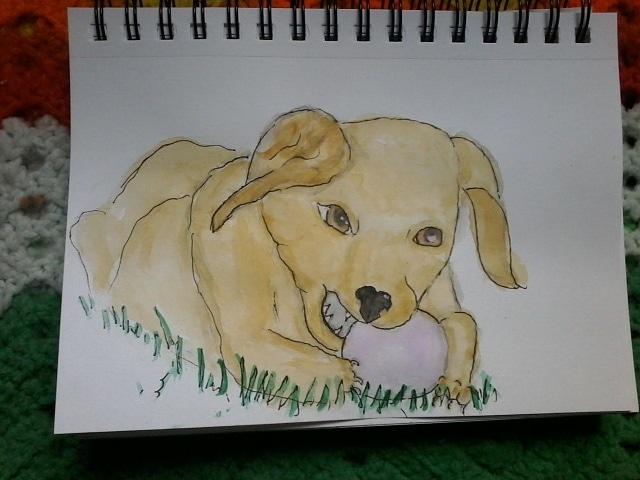 playful puppy 🙂 IMG_20200703_165924_485