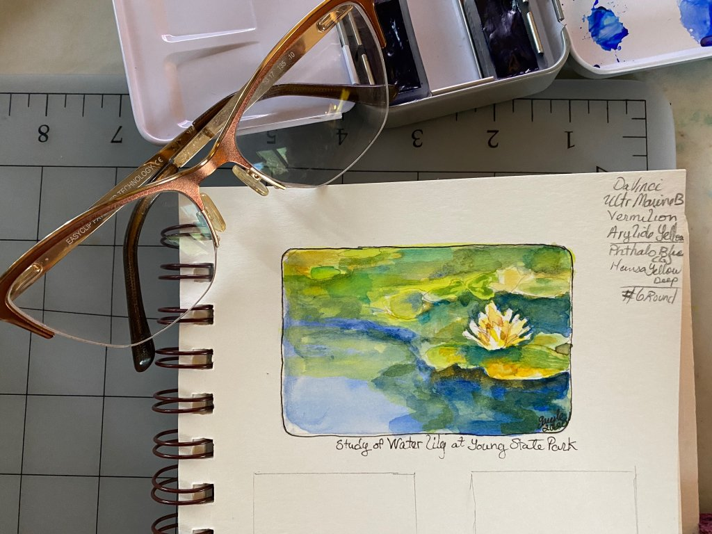 Day 6- Study of Waterlily at #YoungStatePark…another attempt at a miniature #doodlewashJuly2020 #W
