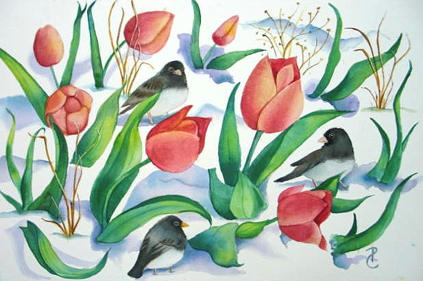 Tulips make for lovely paintings Tulip junco printtulips across street sm