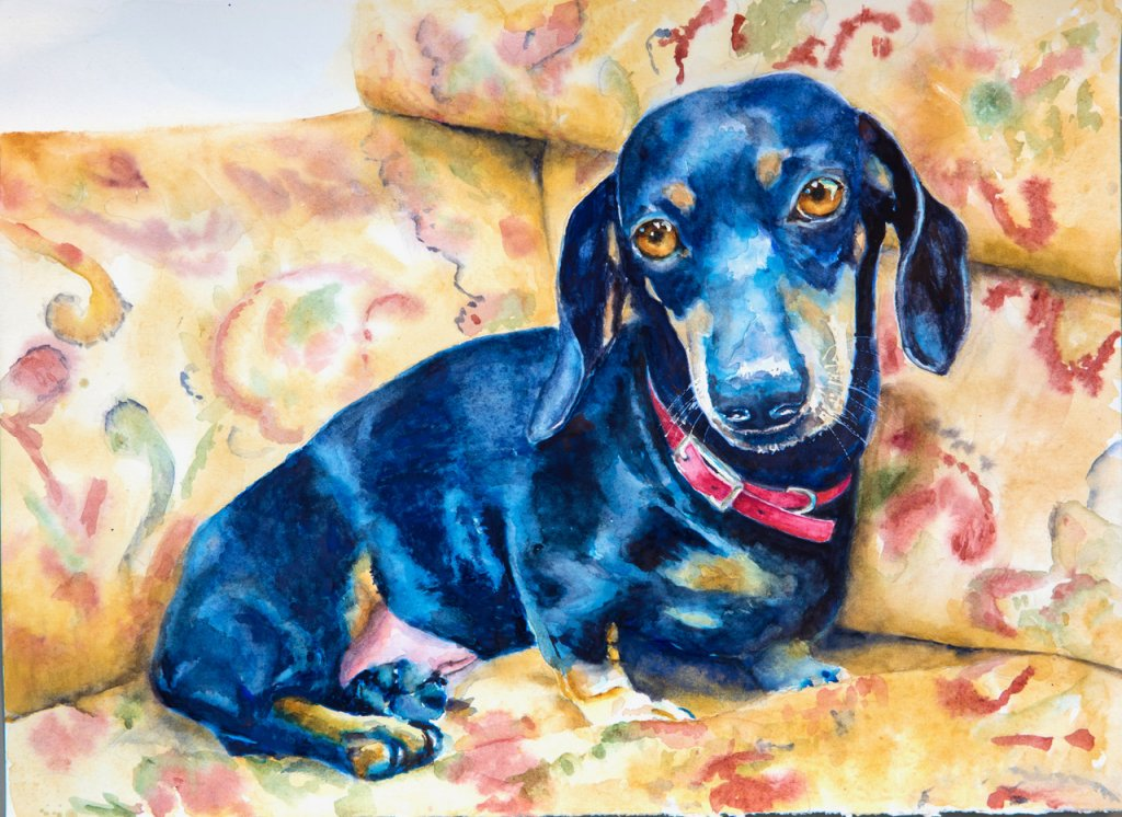 Cujo Pet Portrait Watercolor
