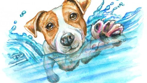 Jack Russell Terrier Swimming Dog Paddle Watercolor Painting Illustration