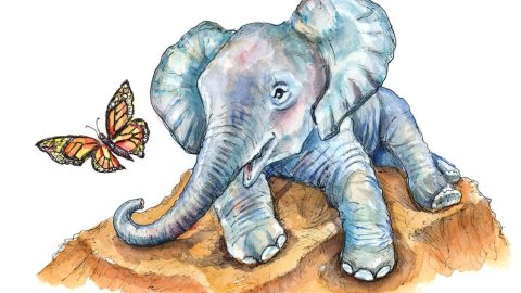 Baby Elephant And Butterfly Monarch Watercolor Painting Illustration