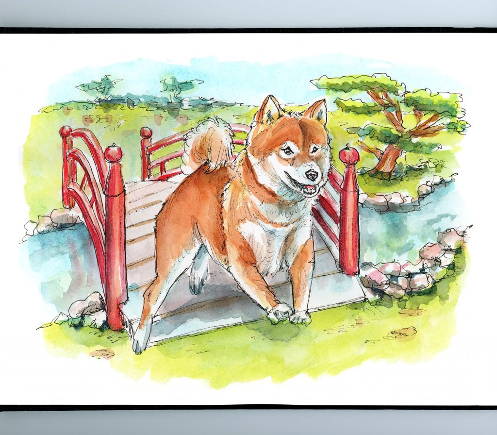 Shiba Inu Japanese Bridge Watercolor Painting Illustration Sketchbook Detail