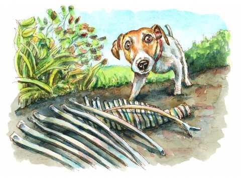 Dog Digging Up Dinosaur Bones Watercolor Painting Illustration