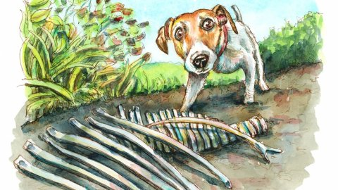 Dog Digging Up Dinosaur Bones Watercolor Painting Illustration