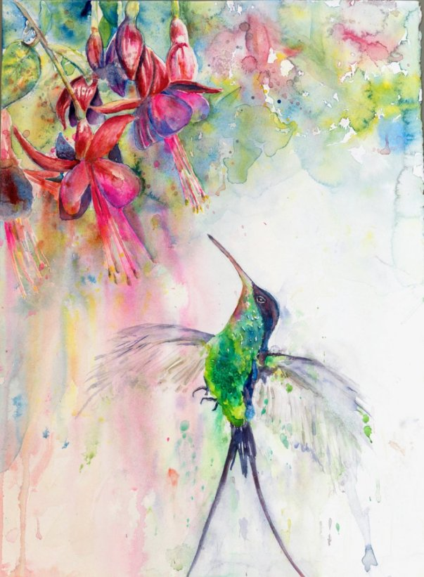 Fucshia Love Hummingbird and Flower Watercolor