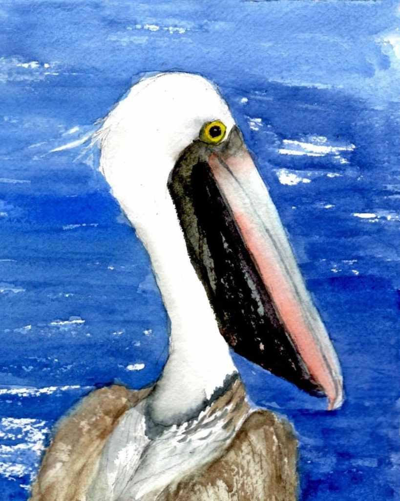 8/8/20 Pelican IMG_20200808_072427_804