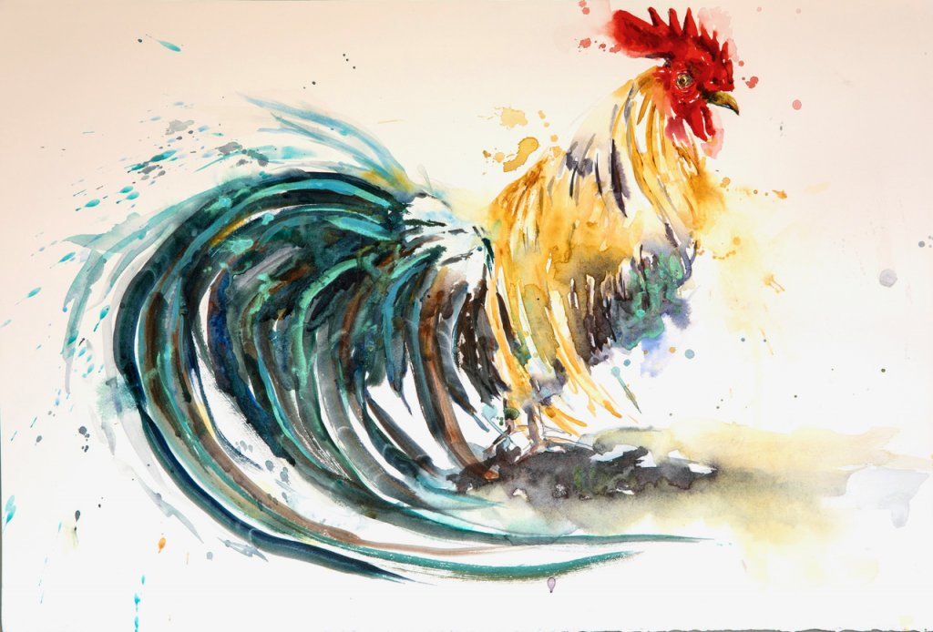 Long Tail Rooster Watercolor Painting